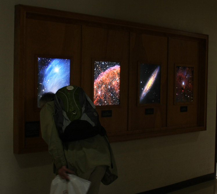 Duratrans Backlit Acrylic Prints on Display at Steward