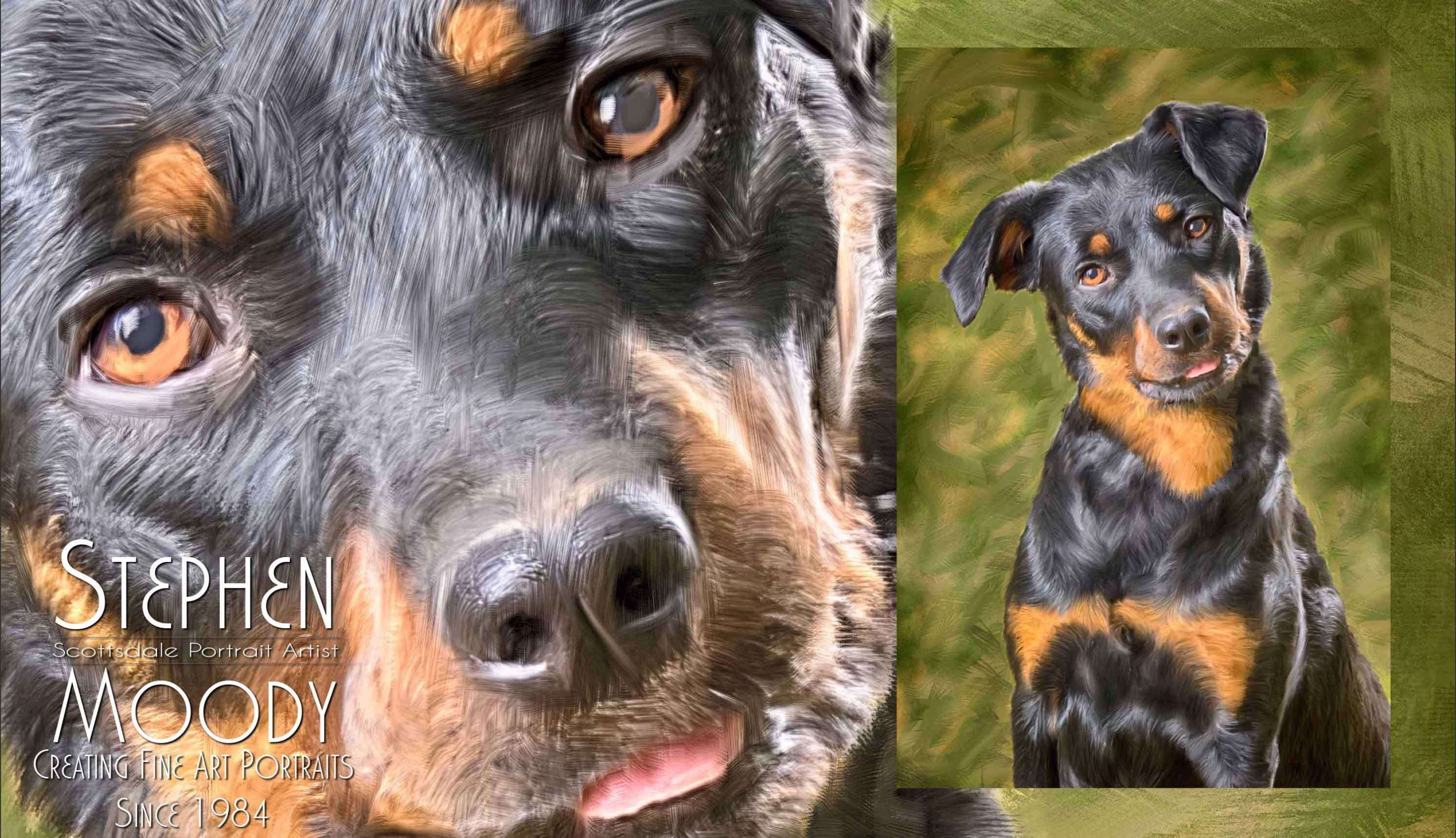 Stephen Moody Unique Pet Portraits - custom printing work