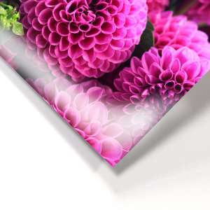 HD Photo Paper FujiFlex