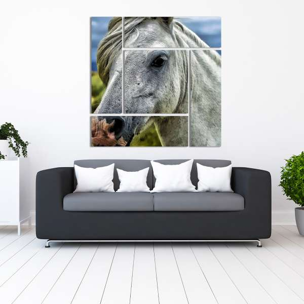 wall art gallery clusters and splits horse