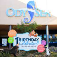 OdySea Birthday custom event signage