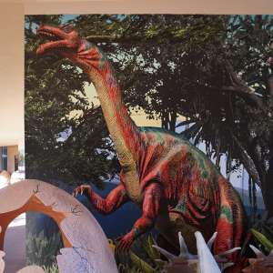 custom wall graphics exterior dinosaur