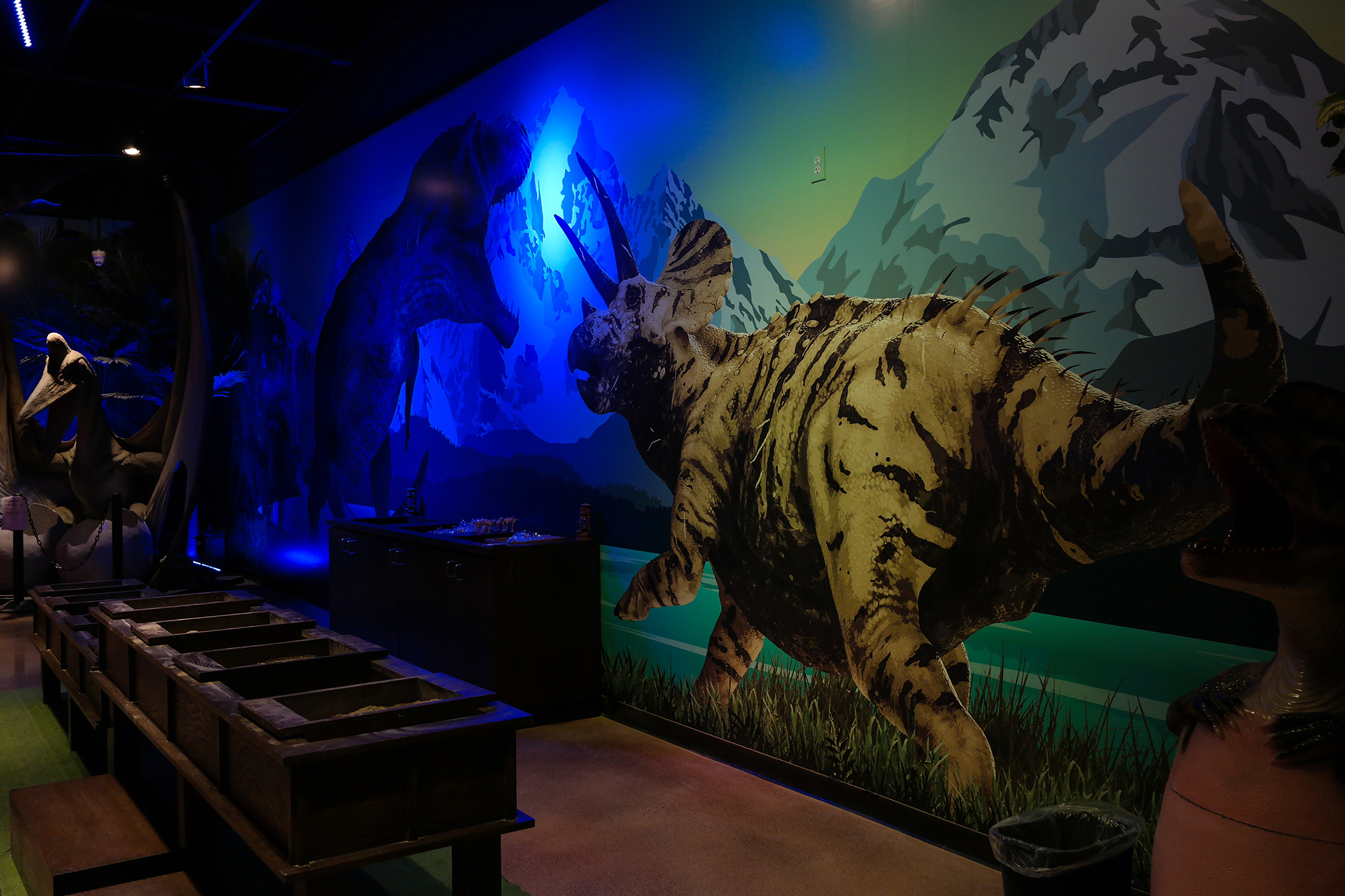 custom wall graphics triceratops