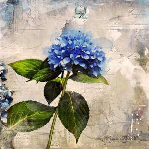 custom print decor blue flower artboja
