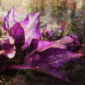 custom print decor purple flower artboja