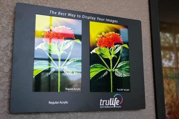 trulife acrylic wall example
