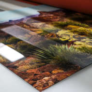 printed nature photos desert landsca