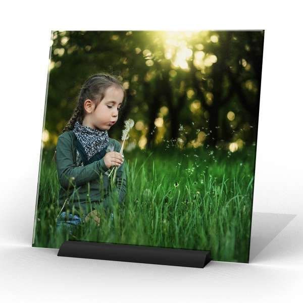 spiffysquare photo gift decor dandelion