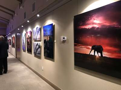 2019 Arizona for Africa charity art auction 2
