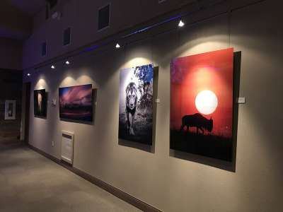 2019 Arizona for Africa charity art auction 3